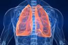 Riassunto della tosse